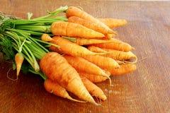 Fresh organic carrots Stock Photos