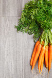 Fresh organic carrots Stock Photography