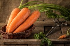 Fresh Organic Carrots in a basket on wooden background. Stock Photography