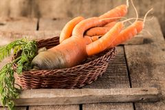 Fresh Organic Carrots in a basket on wooden background Royalty Free Stock Photography