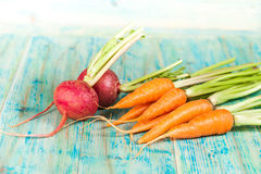 Fresh organic carrots and beetroot Royalty Free Stock Images