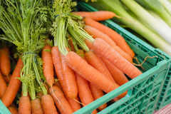 Fresh organic carrots at farmers market Royalty Free Stock Images