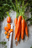 Fresh organic carrots Stock Images