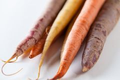 Fresh Organic Carrots Raw Colorful Bunch Isolated Close Up On Wh Stock Photos