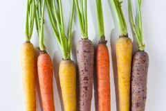 Fresh Organic Carrots Raw Colorful Bunch Isolated On White Backg Royalty Free Stock Photos