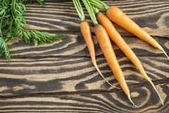 Fresh organic carrots with tops on a wooden table. Top view Royalty Free Stock Image