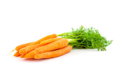 Fresh organic carrots on white background. Fresh organic carrots with their tops on white background Royalty Free Stock Images