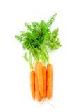 Fresh organic carrots on white background. Fresh organic carrots with their tops on white background Stock Images