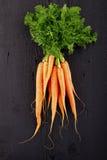 Fresh Organic Carrots Royalty Free Stock Photos