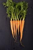 Fresh Organic Carrots Royalty Free Stock Photo
