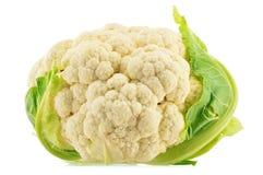 Fresh organic cauliflower on white. Background Stock Image