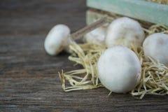Fresh organic champignon mushrooms on wood background.  Royalty Free Stock Photos