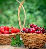 Fresh organic cherries and strawberries Stock Image