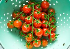 Fresh organic cherry tomatoes washed in colander royalty free stock photography