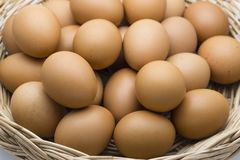 Fresh organic chicken Eggs in the basket. Made form rattan Stock Images