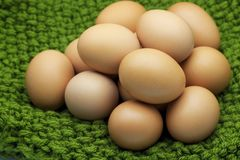Fresh organic chicken Eggs on green yarns. Selective focus Stock Image