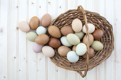 Fresh organic chickeneggs overflow out of basket on wooden backg Stock Photography
