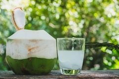 Fresh organic coconut water in the glass on wooden table.  royalty free stock image