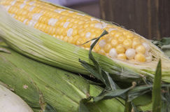 Fresh organic corn on the cob. In its husk Stock Photo