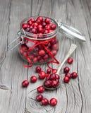 Fresh organic cranberry royalty free stock photography