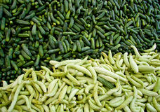 Fresh Organic Cucumber/ Gherkins. At A Street Market In Istanbul, Turkey.  Carsamba Fatih Pazari (Bazaar Stock Photo