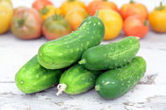 Fresh organic cucumber Royalty Free Stock Photography