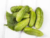 Fresh organic cucumbers. On a white wooden background Royalty Free Stock Images