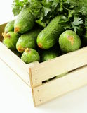 Fresh organic cucumbers. In a wooden box Stock Photography