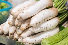 Fresh organic daikon radishes. Fresh organic daikon radishes in the market Royalty Free Stock Photography