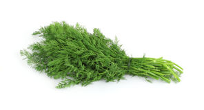 Fresh organic dill herb Royalty Free Stock Images