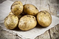 Fresh organic dirty potatoes heap closeup on linen tablecloth on rustic wooden background. Newly harvested potatoes stock image