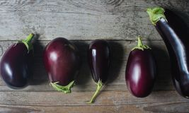 Fresh organic eggplants on rustic wooden background. Healthy food concept, autumn harvest, top view Stock Photos