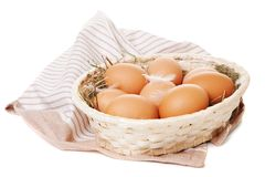 Fresh organic eggs Royalty Free Stock Images