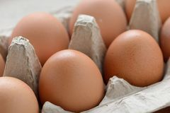 Fresh Organic Eggs Stock Photography