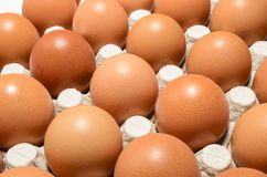 Fresh organic eggs in an egg box Stock Photos