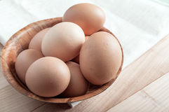 Fresh organic eggs Stock Image