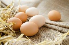 Fresh organic eggs on a sackcloth. Background Stock Photo
