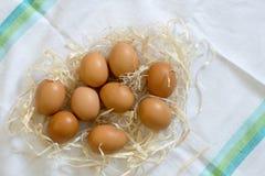 Fresh organic eggs. In straw on white cloth stock photos