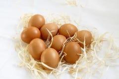 Fresh organic eggs. In straw on white cloth royalty free stock photos
