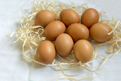 Fresh organic eggs. In straw on white cloth as background stock images