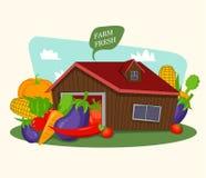 Fresh organic farm background Stock Photos