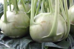 Fresh, organic, farm produce of kohlrabi. (brassica oleracea) on leaves Royalty Free Stock Photos
