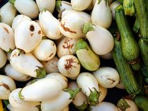 Fresh Organic Farm Produce, White Eggplants and Zucchinis. Fresh locally grown organic farm produce for sale at a weekly Greek farmers market, or laiki, with Stock Photos