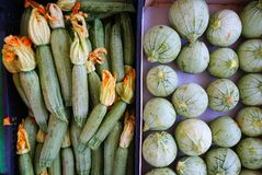 Fresh Organic Farm Produce, Zucchinis. Fresh locally grown organic farm produce for sale at a weekly Greek farmers market, or laiki, with pale green zucchinis or Stock Photography