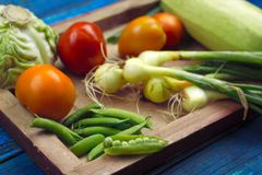 Fresh organic farm vegetables on a wooden tray. Top view blue wooden boards for background ingredients for vegetable stew vegetarian food concept stock image