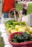 Fresh Organic Farmers Market Royalty Free Stock Photos