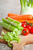 Fresh organic fennel, celery, carrot and tomatoes Royalty Free Stock Photo