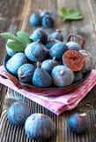Fresh organic figs Stock Images