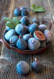 Fresh organic figs Stock Photo
