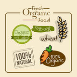 Fresh organic food. Over cream bckground vector illustration Royalty Free Stock Photography